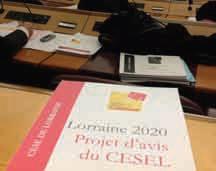Le 8 novembre dernier, les membres du Cesel se sont, comme chaque année, prononcés à l'unanimité sur le rapport sur la Situation économique sociale et environnementale de la région (Siteco).