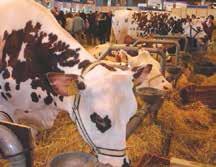Le 50ème Salon de l'Agriculture vient de refermer ses portes, 695 000 visiteurs sont venus souffler les bougies de la plus grande ferme de France.