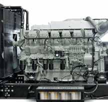 Est Générateur est distributeur de la marque espagnole Inmesol et également des constructeurs Genelec et Gelec.