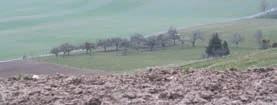 Le futur de l'agriculture lorraine passera par la conciliation entre l'efficacité économique et le respect de l'environnement.