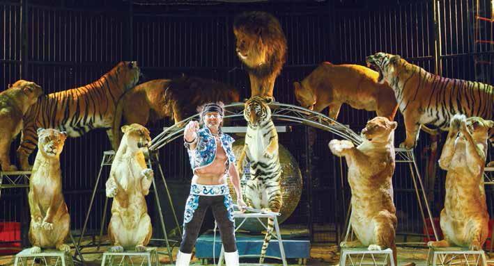 Le Cirque Pinder dressera son chapiteau du 23 au 24 juin au Parc des Expositions de Vandoeuvre pour présenter des numéros exceptionnels.