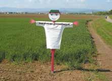 Le Drive des Épouvantails est déjà implanté sur six sites de producteurs locaux en Lorraine. Un concept de la grande distribution adapté à la production locale.