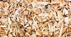 La biomasse s'impose comme élément majeur dans la transition énergétique.