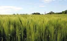L'adaptation du secteur agricole aux changements climatiques était une question bien présente au dernier Salon de l'Agriculture.